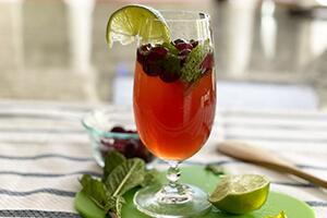 a cranberry lime mint spritzer